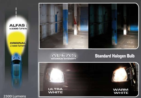 Headlight Bulbs, Alfas Maximum Intensity